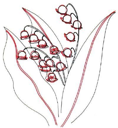 jak nakreslit lilie z údolí