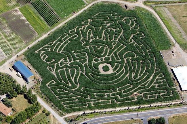 Labyrinty pro děti - velký stimul pro rozvoj