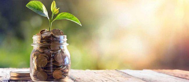Osobní finanční plán: rysy kompilace, doporučení a příklad