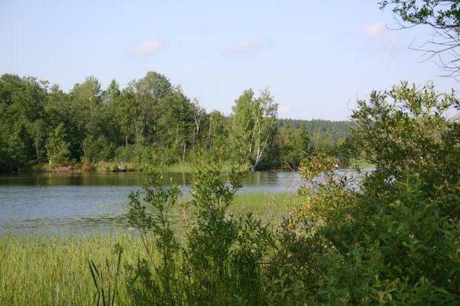 Michurinsky jezero: popis, rybaření, odpočinek