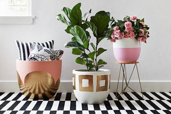 Pruhovaný koberec v interiéru: jak si vybrat a porazit?