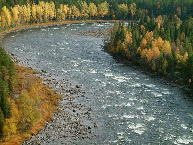 Řeka Umba: popis, vlastnosti